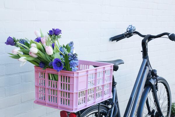 Fahrradkisten Basil