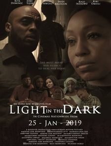 Light in the Dark Poster