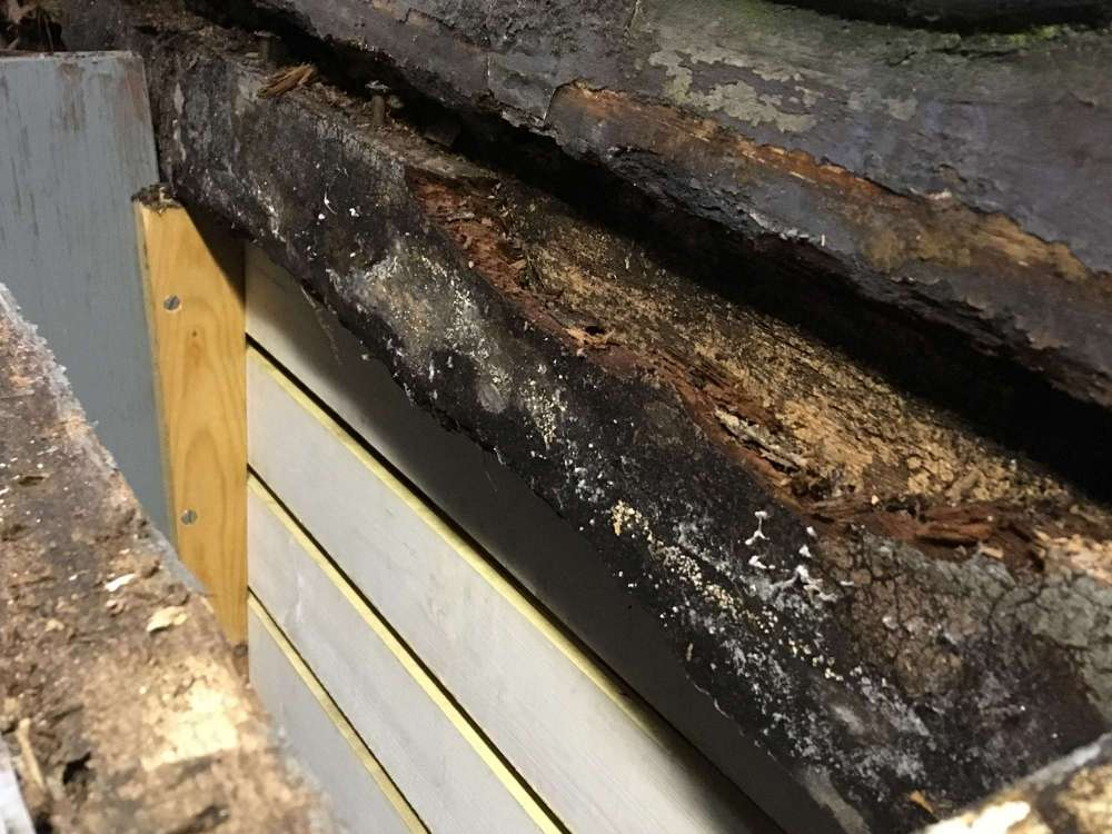 cabin side rot inside.jpg