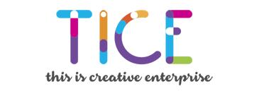 TICE Programme
