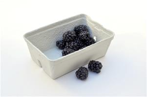 A Punnet with Blackberries
