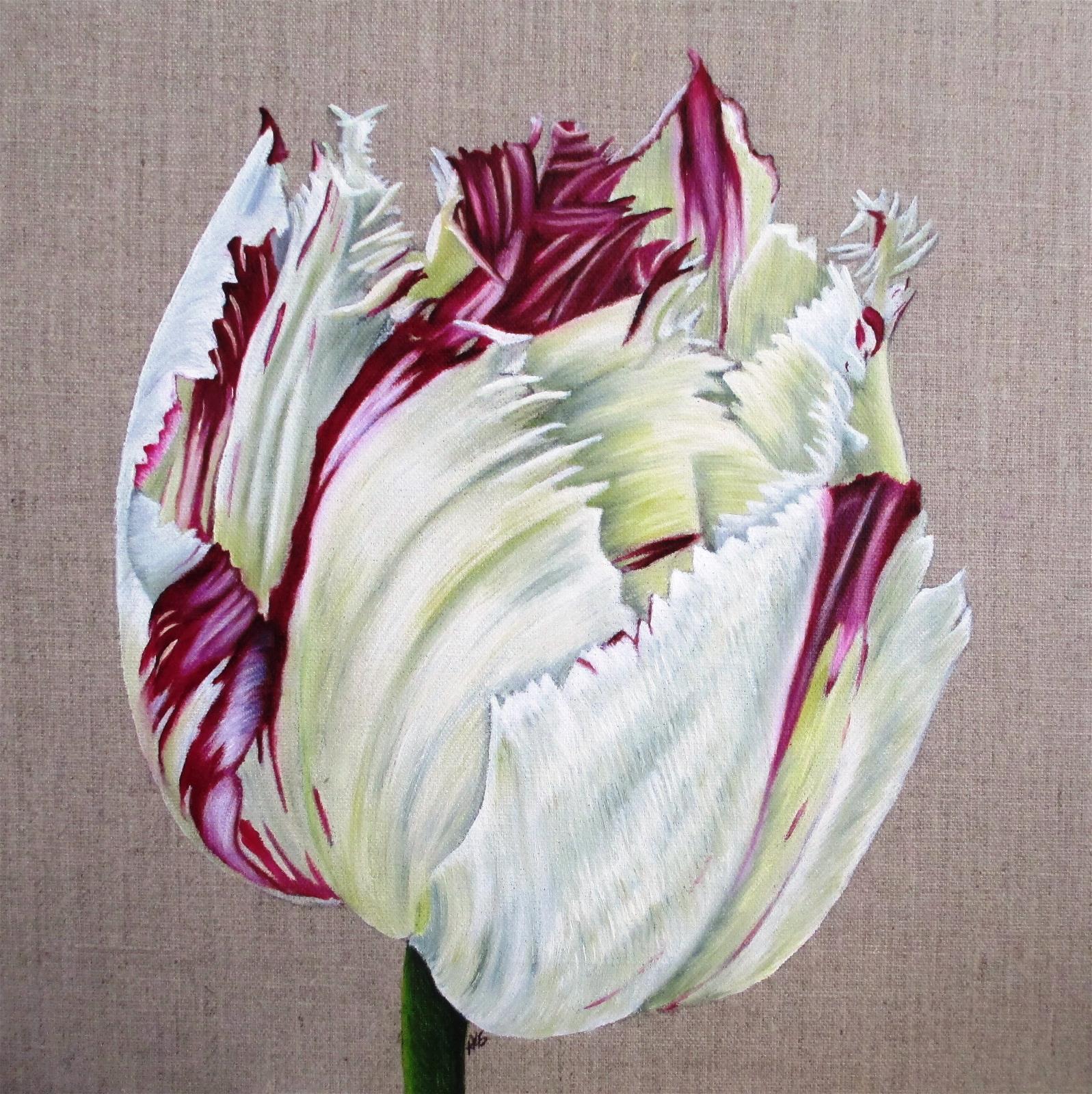Flame Tulip 2