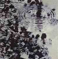 Alder Reflection