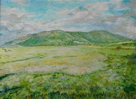 Salt Marsh in Somerset