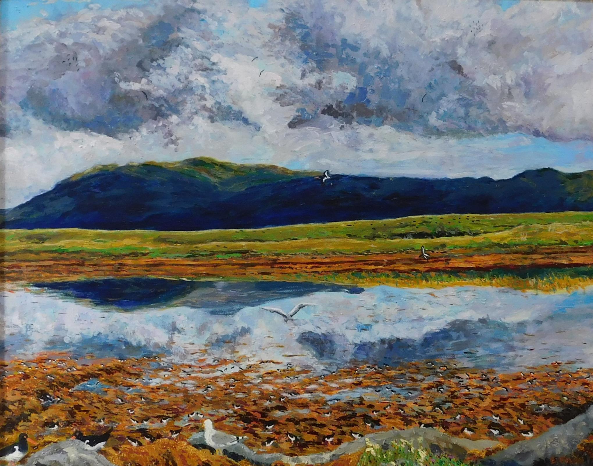 Oyster Catchers and Gulls, Isle of Skye