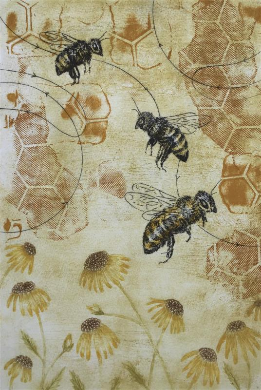 The Language of the Honey Bee