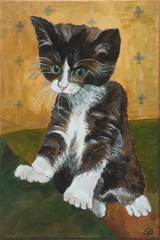 Surprised Kitten.