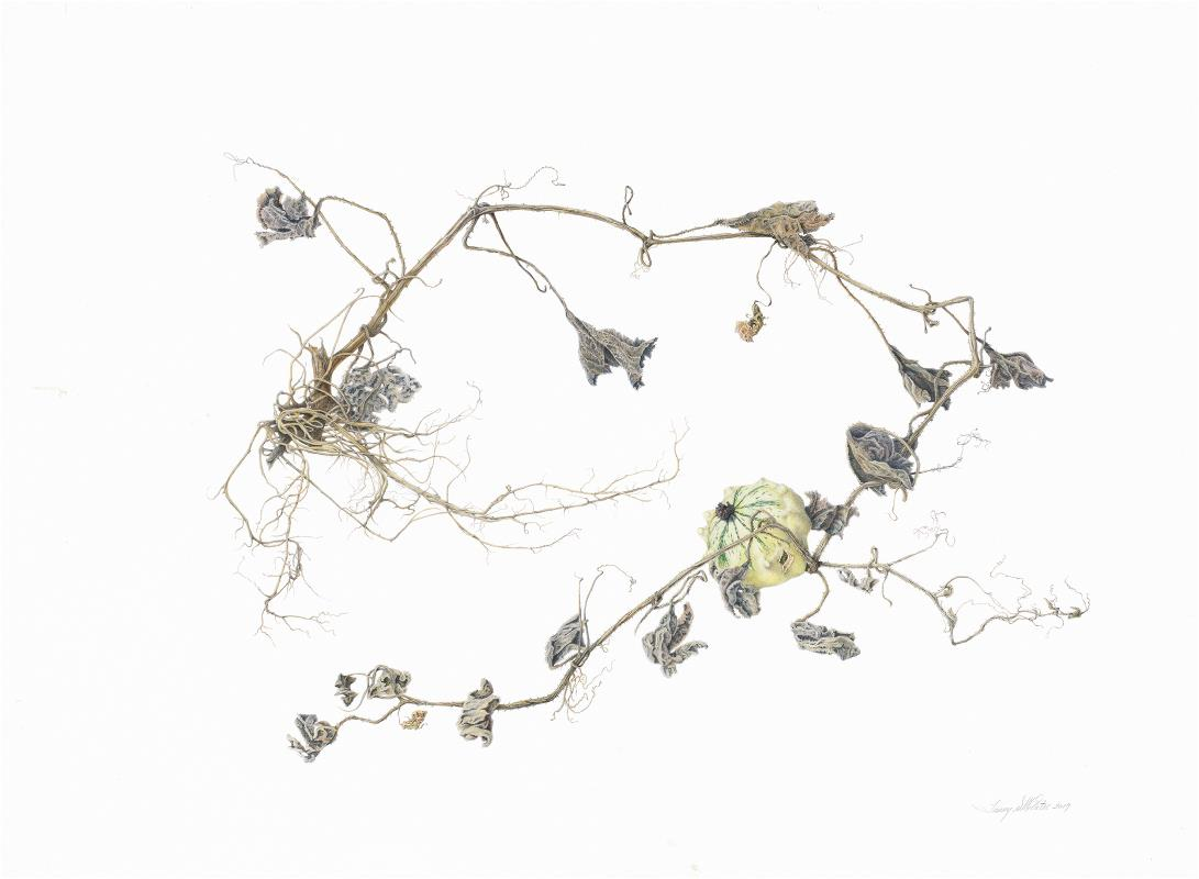 Season's End - AWARD: Exhibiting Excellence - For the most contemporary example of Botanical art