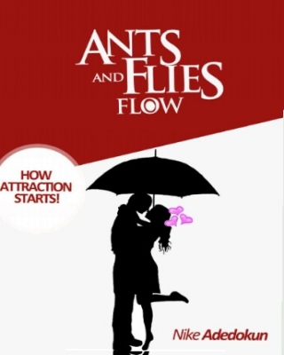 ANTS AND FLIES FLOW: HOW ATTRACTION STARTS!