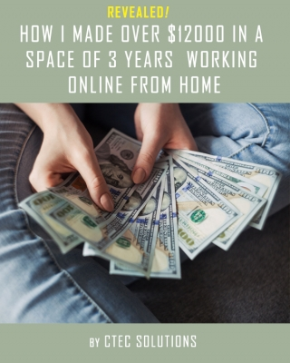 How I Made Over N4.3 Million Online From Home