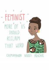 We Should All Be Feminists (TEDx Euston Talk 2013)