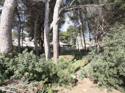 land in Moraira
