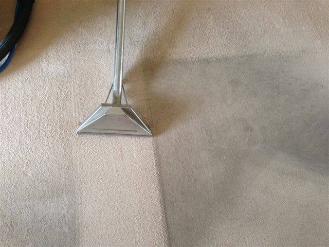 A1 Specialist Cleaning - Upholstery, Leather & Oriental Rug Specialists