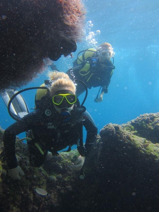 Les Basetes Dive Centre - Centro de Buceo