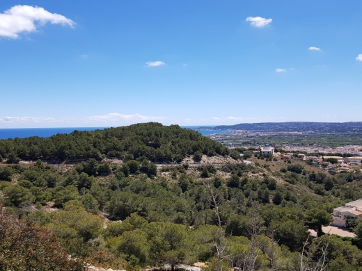 land / parcela / plot in Javea
