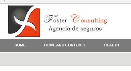 Foster Consulting - Insurance Agent
