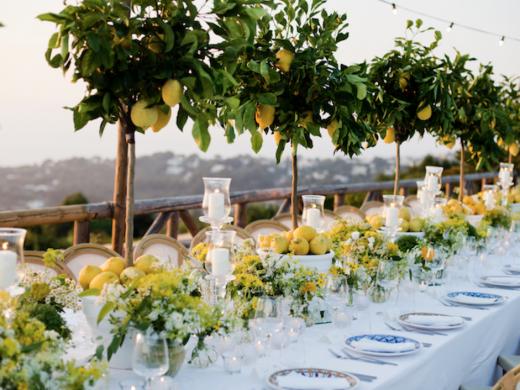 Vegan Weddings on the Costa Blanca