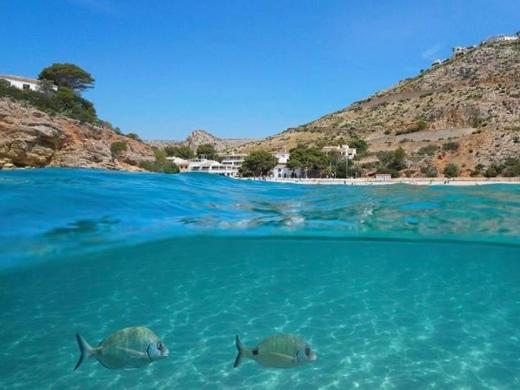Javea Beaches: Cala La Granadella