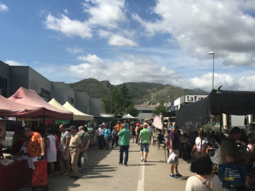 Markets Guide: Pedreguer Sunday Market