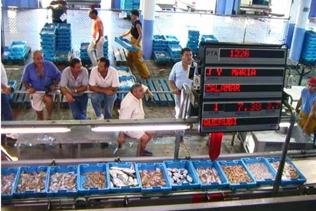 Calpe Fish Market La Lonja De Calpe Calpe Places To