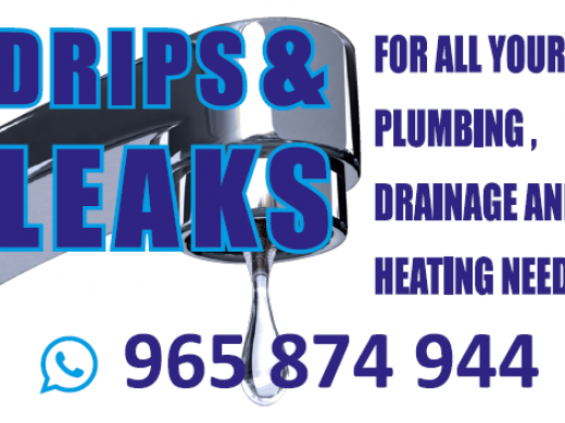 Drips and Leaks - Plumber