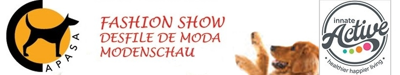 Charity Events: APASA Fashion Show