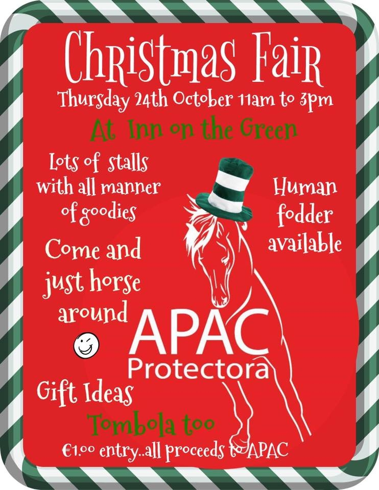 Charity Christmas Fair at the Inn on the Green in aid of APAC Protectora