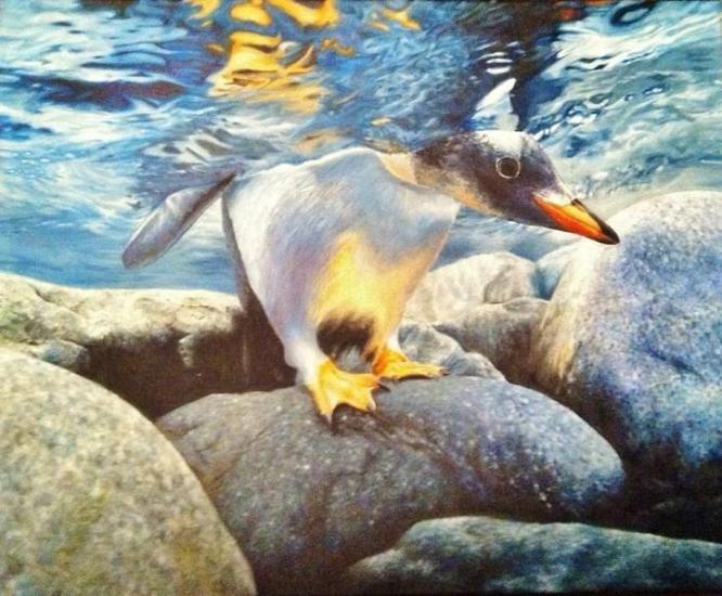 Penguin/water study