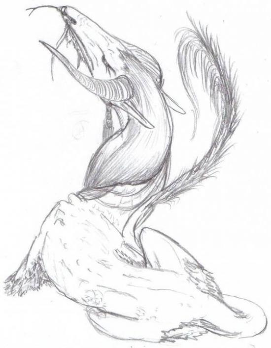 Goblin Nosed Dragon