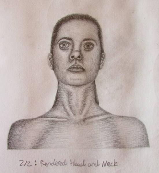 Female Human Head and Shoulders Drawing