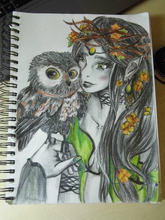 Owl and Fairy
