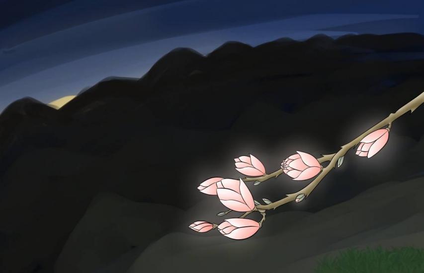 Budding Flowers