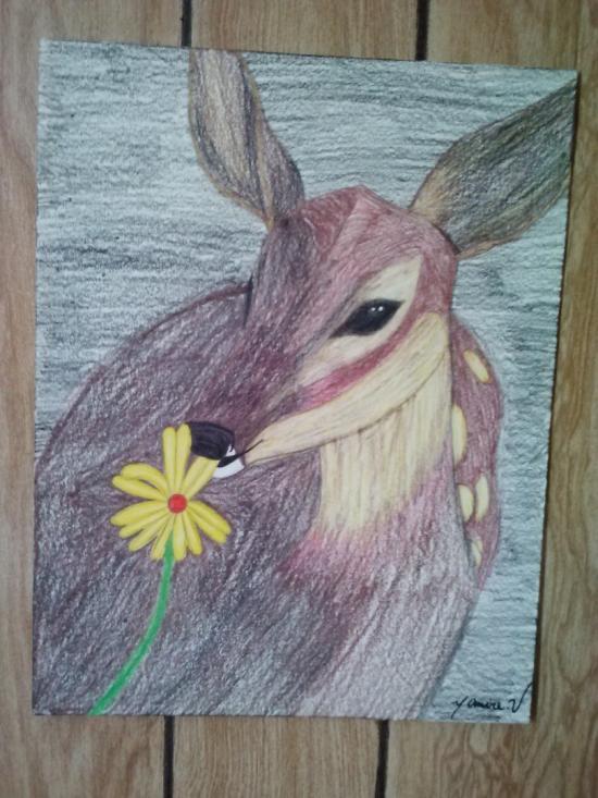 deer (ciervo)
