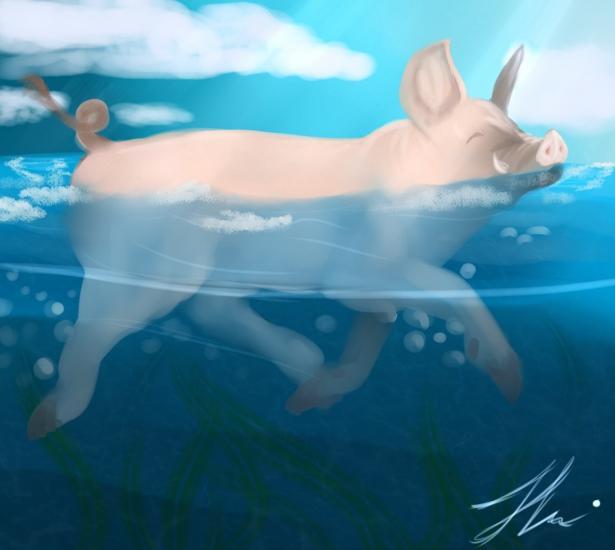 Swim pig