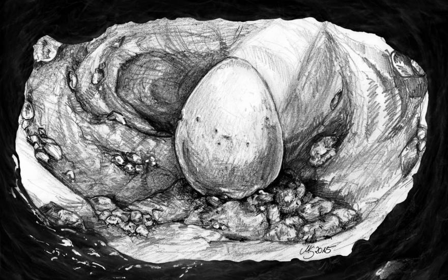 Platinum Cave - Sketch