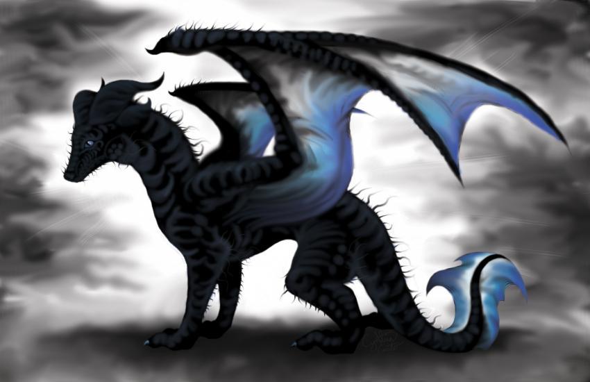 The Dark Light Dragon