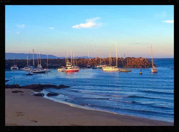 Boat Harbour - Wollongong