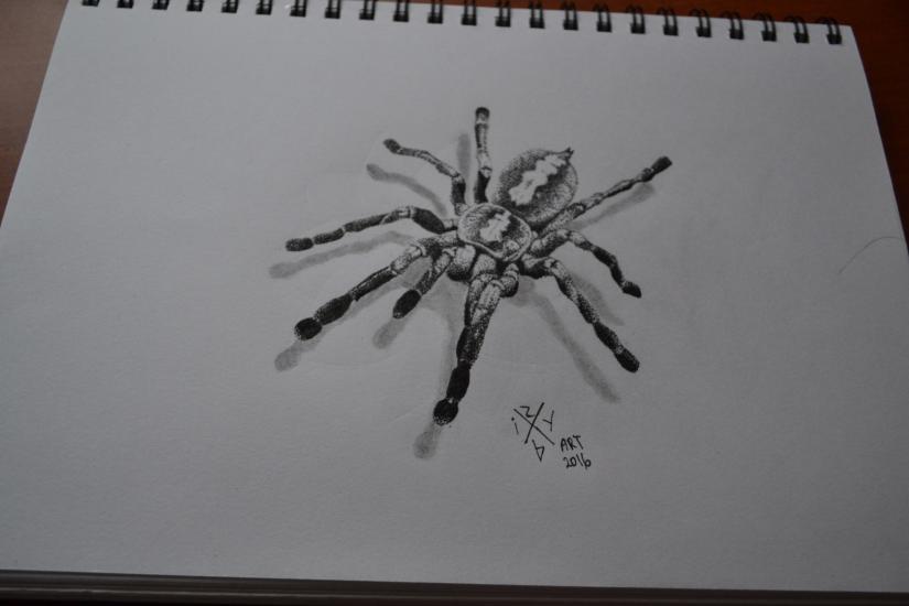 spider (dotwork)