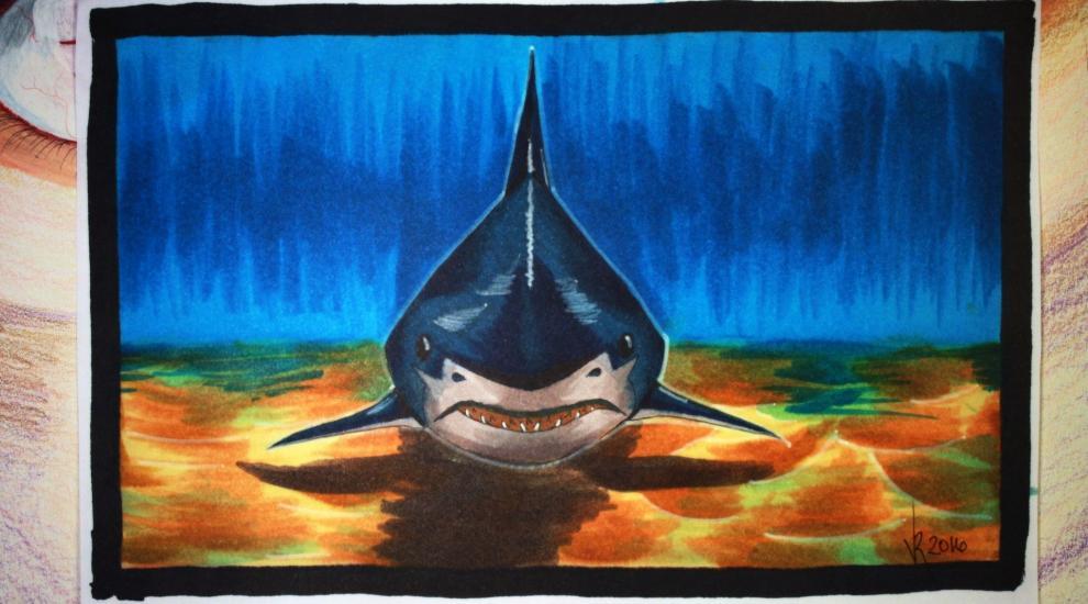 Shark (TIME LAPSE youtube video)