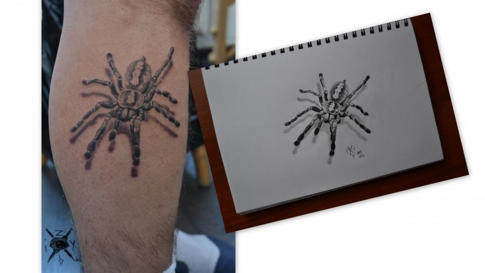 dot spider