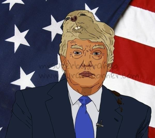 Trumps toupee?