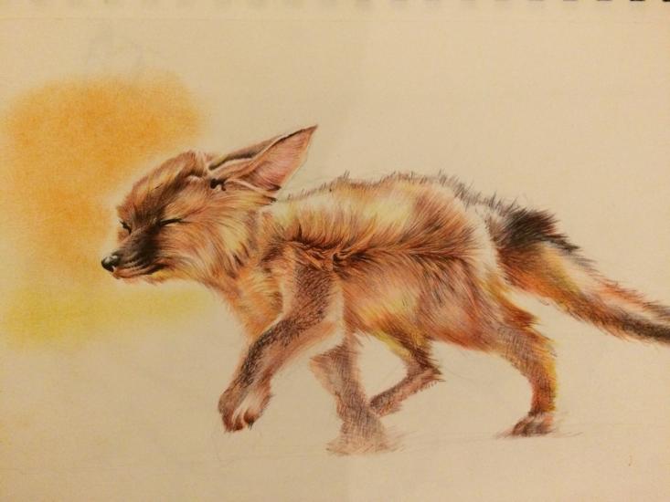 Fennec fox WIP 3