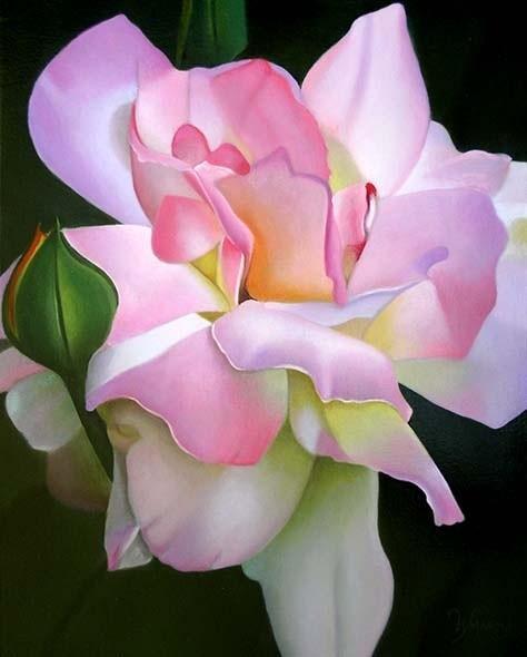 """Peace Rose"""
