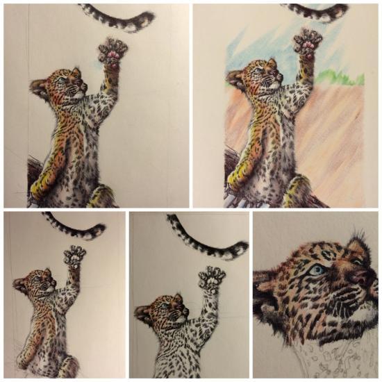 Progression of My leopard cub work