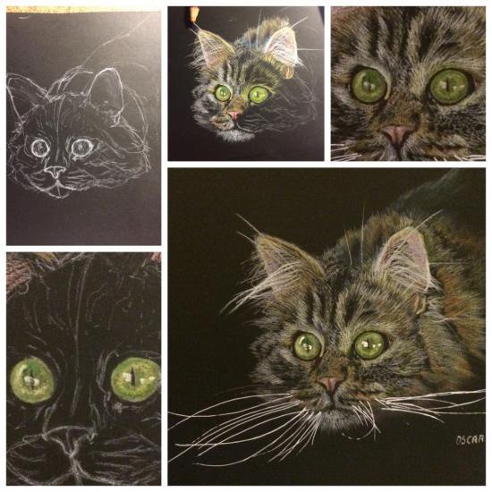 Progresion of my cat work