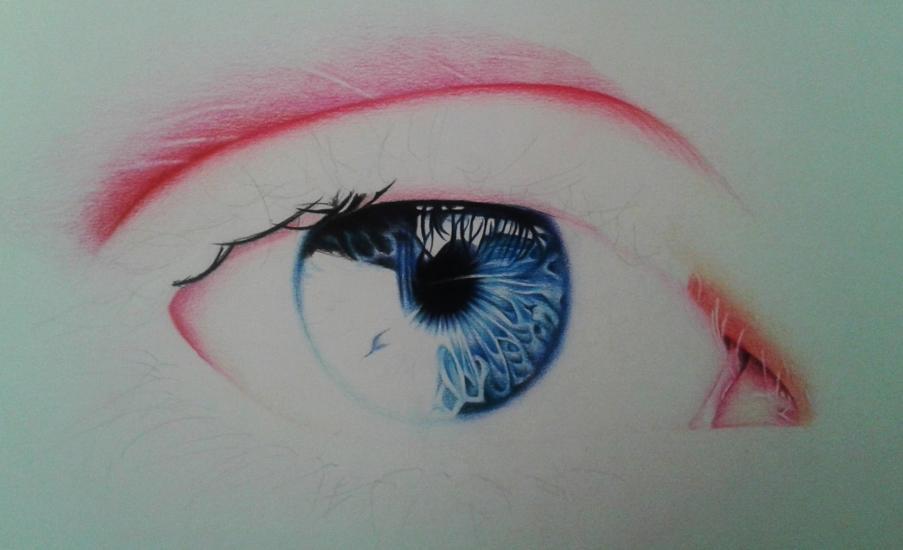 realistic eye in progress