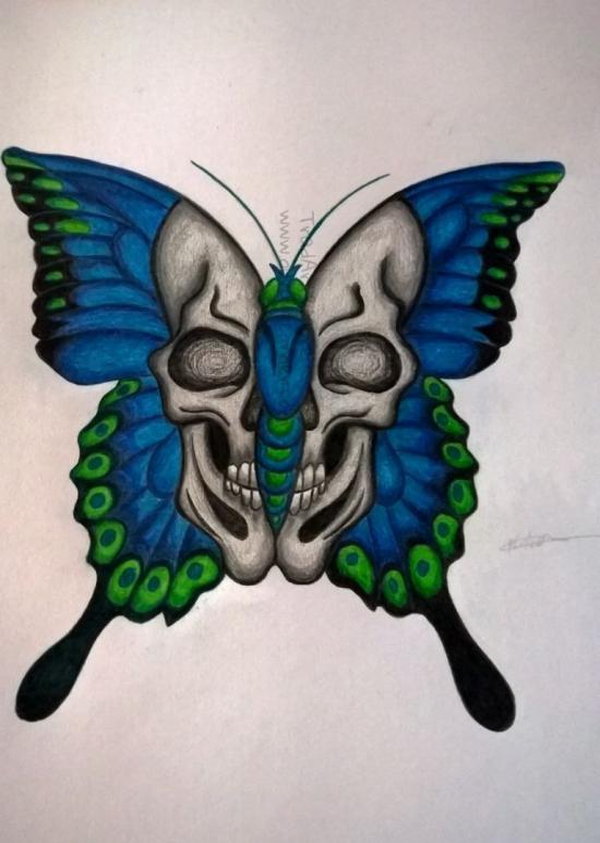 Butterfly Skull Wings (Complete)