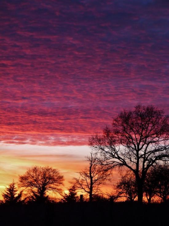 Coucher de soleil / Sunset