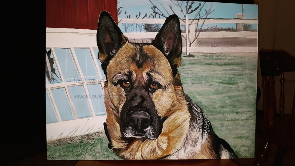German Sheppard- Commission painting