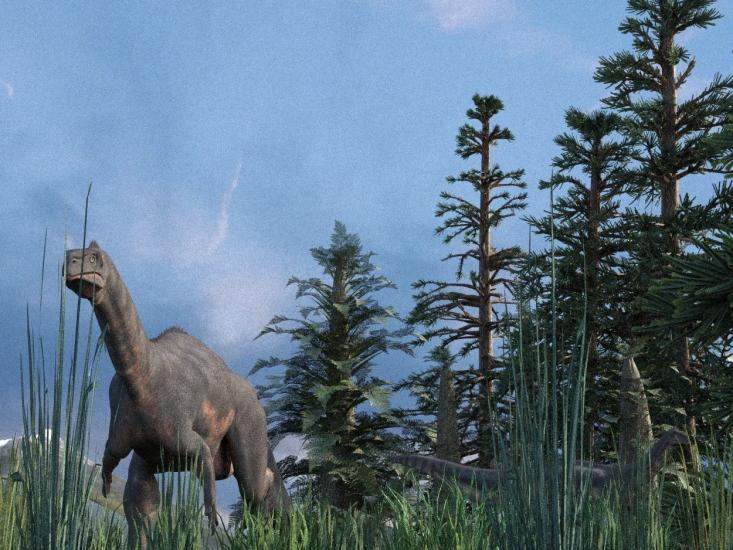 Plateosaurs in the grass